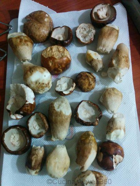 funghi porcini puliti