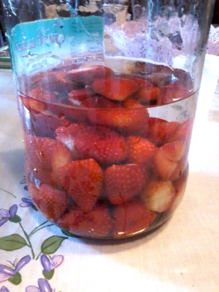 liquore alla fragole fatto in casa - fragolino