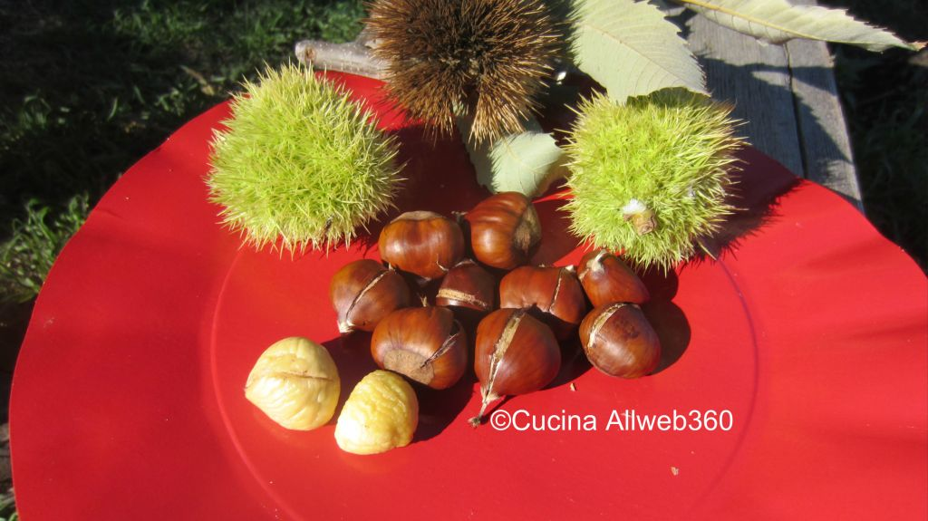 castagne in microonde